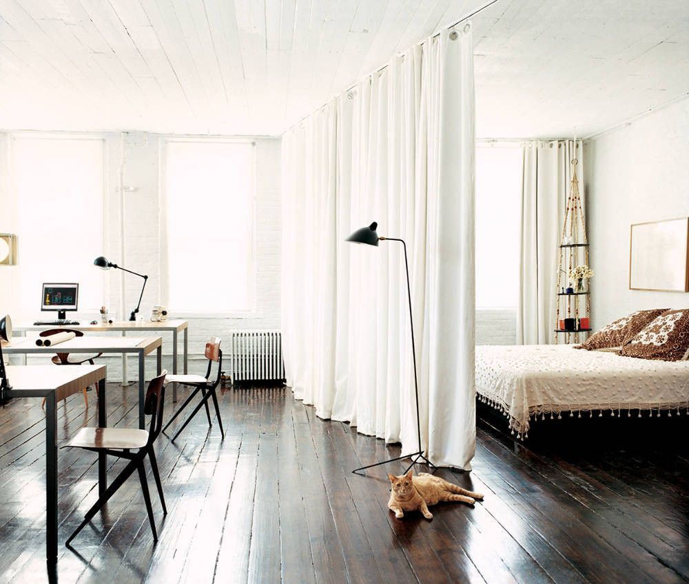 Open plan studio with curtain and cat sat on the floorboards